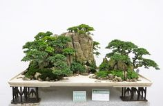 Landscape Penjing (shanshui penjing): In this form, an idealized landscape is created using rock as the main artistic medium. Description from pinterest.com. I searched for this on bing.com/images