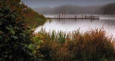 William M. Tugman  State Park...Oregon Coast on Eel Lake....thinking that middle of summer get away...