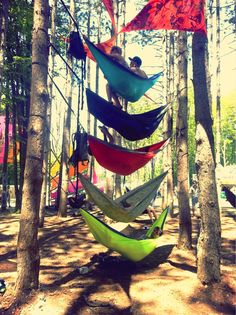 Electric Forest Girls   electric forest festival cachedelectric forest tagged electric forest ...