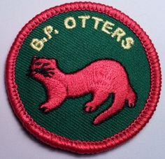 """The Otter program is still in development at the national level, but serves as an excellent introduction to Traditional Scouting for younger children. Their motto is """"Busy and Bright."""" The Otters are the youngest section in our Association with children joining at the age of 5 years and going to the Timberwolf program at the age of 8 (Kindergarten through 2nd grade). The Otter Section is referred to as a """"Raft"""" (much like the Timberwolf """"Pack"""") and the smaller units within the Raft are refer... Baden Powell Scouts, Timberwolf, Scouting, Otters, Rafting, Motto, 5 Years, Kindergarten, Bright"""