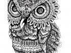 Display image coloriage-adulte-animaux-hibou-gros-yeux