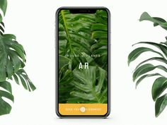 House of Plants AR Concept by Nathan Riley
