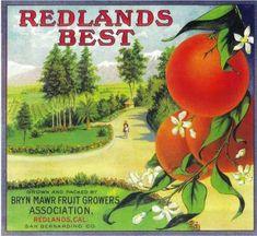 Redlands Best Orange Label – Redlands, CA