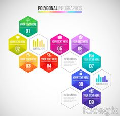 Color Hexagon business information vector charts