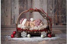 Caralee Fall Fotografie ~ Idaho Falls, ID Neugeborenen Baby Fotograf. Newborn Christmas Pictures, Newborn Pictures, Baby Pictures, Newborn Pics, Baby Photos, Santa Baby, Newborn Outfit, Baby Newborn, Baby Baby