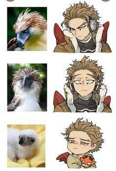 Hawks (My Hero Academia) Otaku Anime, Anime Meme, Funny Anime Pics, Cute Anime Guys, Anime Art, Boku No Hero Academia Funny, My Hero Academia Shouto, My Hero Academia Episodes, Hero Academia Characters