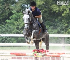 Here's how to work over fences with your horse, even when riding space is limited.