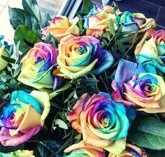 B e a u t i f u l  C o l o r �� • Quand Monsieur décide de me faire une petite surprise en m'offrant des fleurs, il fait les choses bien! Regardez moi ce superbe bouquet de roses multicolores, vraiment canon �� Belle journée les IG ��  #flowers #fleur #picoftheday #loveflowers #rose #multicolor #happy #smile #gift #thankyou #love #beautiful #instagirl #followme #flowerslovers #flowerstagram #igersparis #flowersoftheday #presents #bouquet #lifestyle #flowerpower #colorful #ilovehim #home…