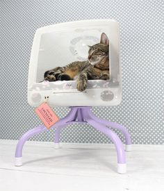 furniture for pets, painted furniture, pets animals, A broken Apple monitor converted into a cat bed