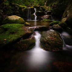"John Steele's Instagram photo: ""Light in the deepest, darkest Korean forest"" Waterfall, Korean, Deep, Outdoor, Instagram, Outdoors, Korean Language, Waterfalls, Outdoor Games"