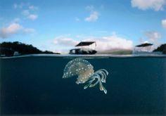 "Ocean  ""海底楽園""  by Itaru Takaku 鹿児島県  作品サイズ: A4、12枚組作品"