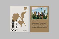 Outsider Drinks labels, designed by Studio Thomas. Web Design, Book Design, Layout Design, Print Design, Design Ideas, Editorial Layout, Editorial Design, Graphic Design Typography, Graphic Design Illustration