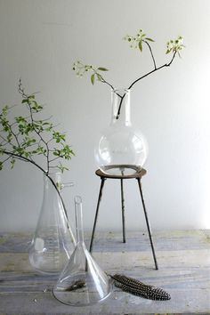 love the use of glass beakers for flowers, candles, storage, etc. ~ from ethanollie etsy shoppe Flora Vintage, Etsy Vintage, Erlenmeyer Flask, Lab Equipment, Sweet Home, Ikebana, Glass Vase, Antiques, Inspiration