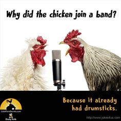 Why did the chicken join a band? Because it already had drumsticks. Cute Jokes, Stupid Jokes, Funny Jokes For Kids, Corny Jokes, Funny Puns, Kid Jokes, Funny Stuff, Funny Quotes, Funny Things