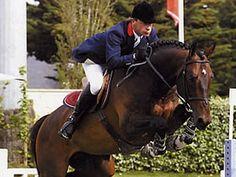 Kannan Stallion | 01-05-1992 | KWPN | dark bay | 1m74
