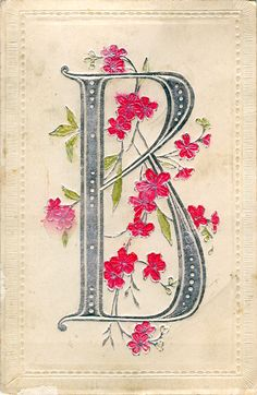B is for BEAUTIFUL BLOSSOMING B!                     * * *         For more fantastic Alphabet Thursday posts go to   Mrs. Matlock's Cl...