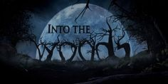 Into the Woods appeals to theatre kids, not so much everyone else.