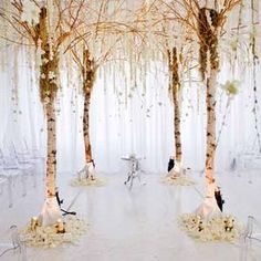 Use trees left from bec's wedding with moss and critters hanging from it as decor.