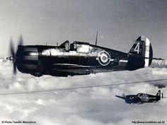 French Vichy Curtiss H 75 Hawk C1 n°259 - 2ème escadrille SPA 75 of GC I/5 - Rabat Salé - 1942.
