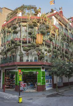 Casa de los cactus de Calella by jobaro