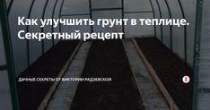 С каждым годом почва в теплице становится хуже по своему составу, поэтому ее необходимо улучшить. Расскажу, как с помощью секретных ингредиентов я оздоравливаю почву в своей теплице.