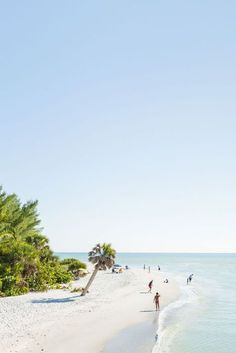 It's Blind Pass Beach on the western end of Sanibel Island, Florida. Beautiful places to vacation!