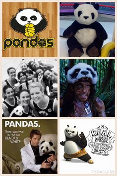 Pandas Motivation