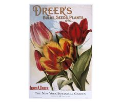 The splendid depictions of old favorite tulips on this poster are from a vintage nursery catalog in the Rare Book Collections of the Mertz Library here at the Garden. Hang tulips on your walls while you're waiting for tulips to bloom outside! $8 at Shop in the Garden.