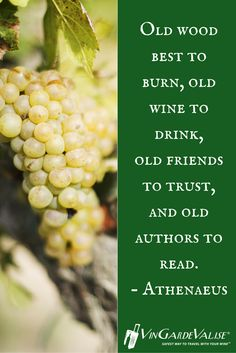 Old wood best to burn, old wine to drink, old friends to trust, and old authors to read. - Athenaeus
