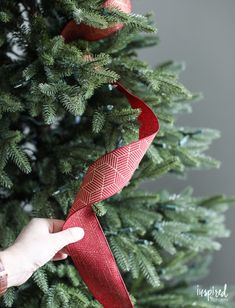 Tips and Tricks for Beautiful Christmas Tree Ribbon +VIDEO Styling Christmas Tree Ribbon Christmas Tree Decorations Ribbon, Ribbon On Christmas Tree, Beautiful Christmas Trees, Christmas Tree Themes, Merry Christmas, Christmas Tree Toppers, White Christmas, Christmas Crafts, Ribbon On Tree