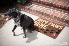 Dirty Paws | Pink Ribbon Welcome Mats