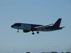 Tim&Struppi A320