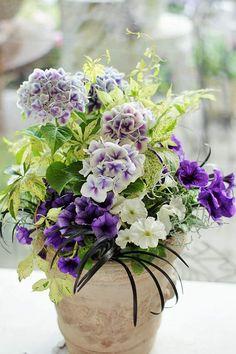 植え寄せギャザリング   花のギャラリーWAKOH