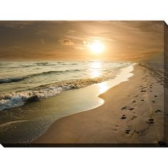 """Footprints"" Giclee Print Canvas Wall Art (24 Inches X 36 Inches X 1.5 Inches), Multicolor, Picture Perfect International"
