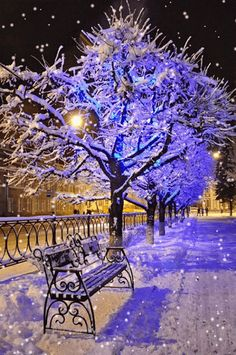 Winter park at night would be a beautiful location for a fashion shoot Winter Park, Winter Szenen, I Love Winter, Winter Magic, Winter Blue, Winter Sunset, Beautiful World, Beautiful Places, Beautiful Pictures