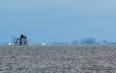 Fleetwood RNLI Open Day 2016 - photos taken from Knott End Jetty, River Wyre Estuary. Wyre Light with Heysham nuclear power station in the distance. Nuclear Power, Blackpool, Distance, Coast, River, Places, Photos, Pictures, Nuclear Force