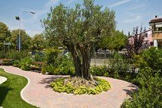 Risultati immagini per piccoli giardini pubblici