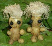 Kartoffelkerlchen stecken