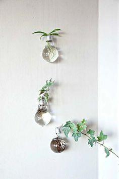Vasi fatti con lampadine, da appendere poi alle pareti, per un grande effetto