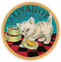 Le chat vu à travers les anciens manuels de leçons de choses des années 50. L'étude de cet animal éminemment domestique figurait alors au ...