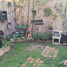 nachuさんの、庭,植物,オリーブ,スコップ,フェンス,ヒメイワダレソウ,セダム,JUNK,f.45,ガーデンピック,お花,Junk Arrow,さびさび,ガーデン雑貨,多肉植物,ガーデン,のお部屋写真