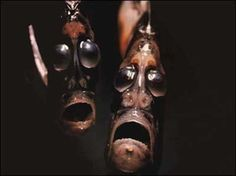 Deep Sea Hatchetfish A.K.A. the Fish That Will Eat Your Soul    Also known as the fish of the damned