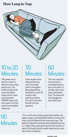 Funny pictures about How Long To Nap For The Biggest Brain Benefits. Oh, and cool pics about How Long To Nap For The Biggest Brain Benefits. Also, How Long To Nap For The Biggest Brain Benefits photos. Health Facts, Health And Nutrition, Health And Wellness, Health Tips, Health Fitness, Fitness Facts, Herbal Remedies, Health Remedies, Home Remedies