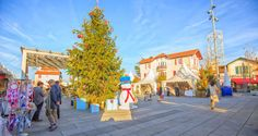 Anglet : Marché de Noël franco‐allemand   Euskal Herria - Pays Basque - Pyrénées Atlantiques   Actualités en Aquitaine