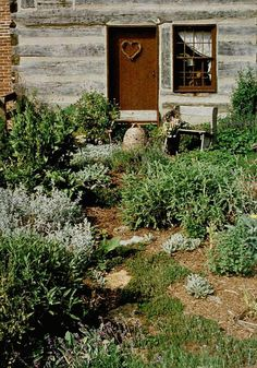 herb garden with bee skep