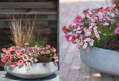 Planted: Spring Container Inspiration on The Terrain BULLETIN.