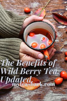 Wild Berry tea is very fashionable because of the great benefits they have for our health, but do we really know what berries are? The fruits of the forest are also known as red fruits, since this color is the protagonist in all the fruits.