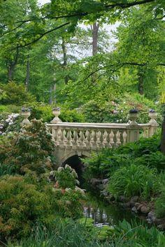 The secret garden. Beautiful Landscapes, Beautiful Gardens, The Secret Garden, Secret Gardens, Enchanted Garden, Dream Garden, Lush Garden, Cacti Garden, Flowers Garden