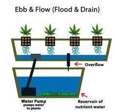 Growing cannabis with Ebb & Flow (Flood & Drain) hydroponics diagram - Moving gif shows how everything works