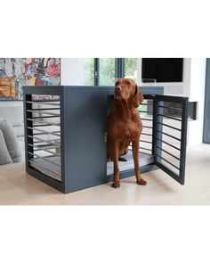 The sleek and sophisticated Moderno Dog Crate by Bowsers Pet Products is a functional, eye catching architectural piece that will bring life to any room. Dog Crate Cover, Diy Dog Crate, Dog Kennel Cover, Diy Dog Kennel, Dog Kennels, Dog Playpen, Large Dog Crate, Mutt Dog, Dog Crate Furniture